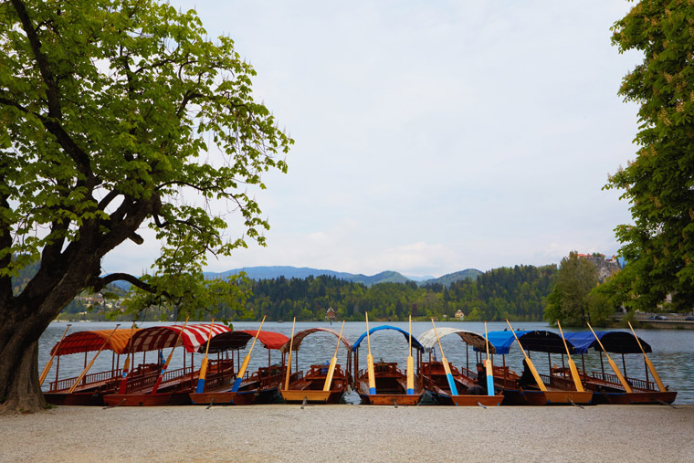 boats to take to cathedral in the center of bled lake slovenia
