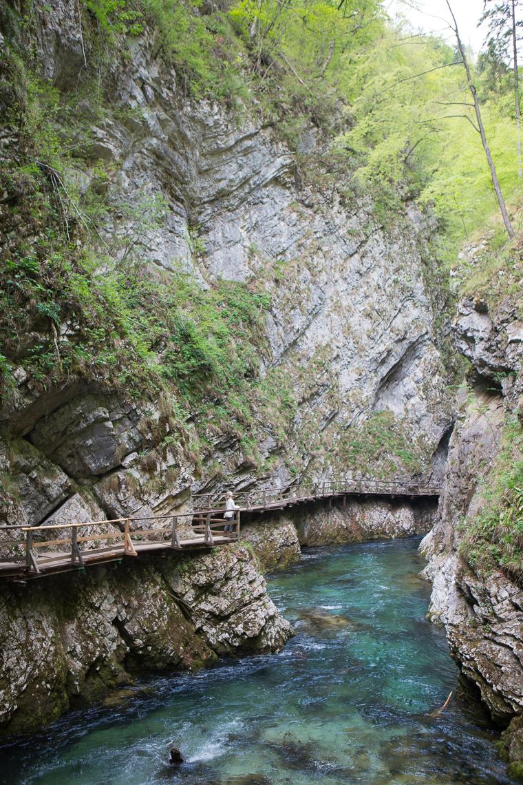 Vintgar Gorge Water near Lake Bled Slovenia