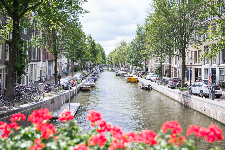 Canals of amsterdam with flower beds in summer