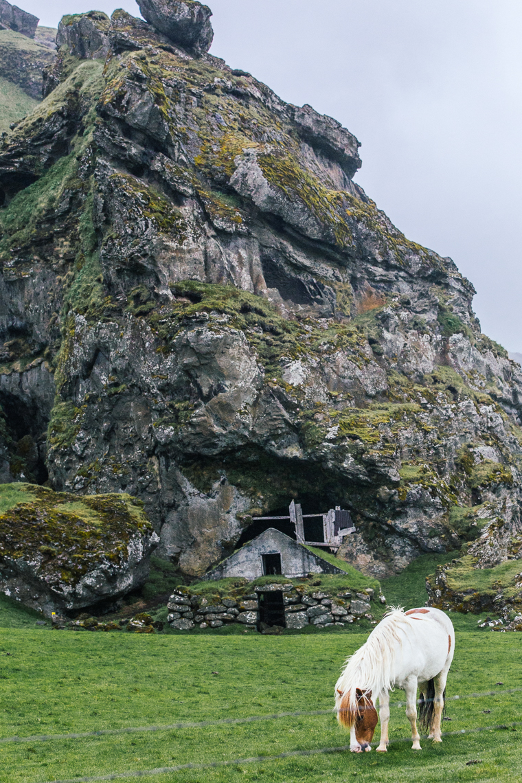 House built into rock and horse in iceland
