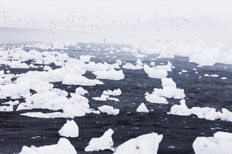 Jökulsárlón beach next to glacier ice lagoon