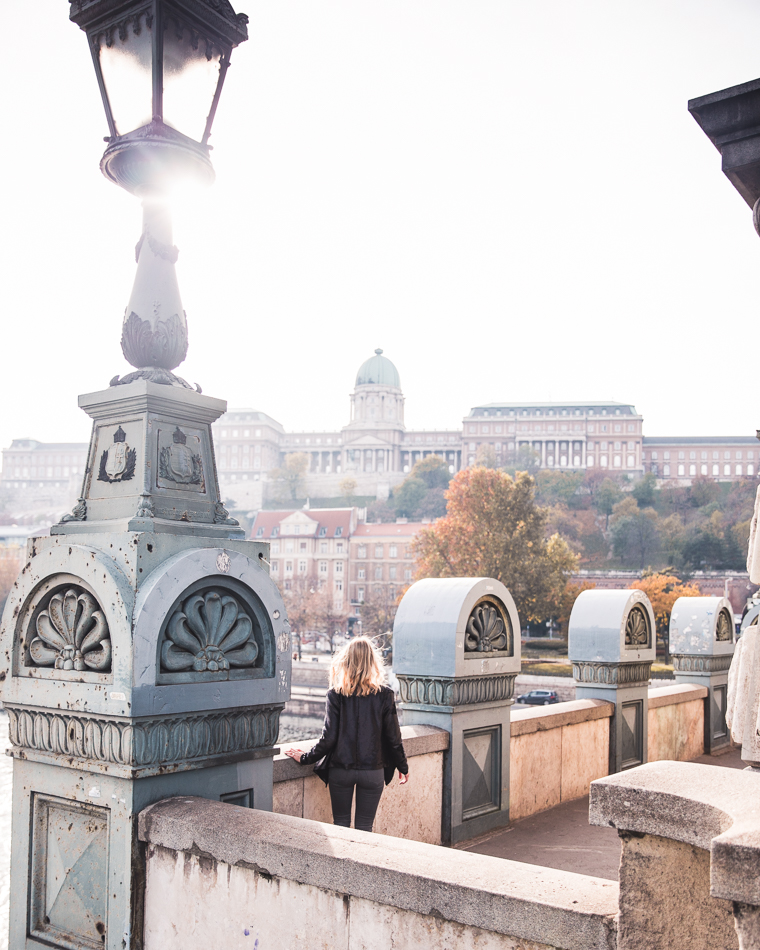 View of Buda Castle from Széchenyi Chain Bridge in Budapest