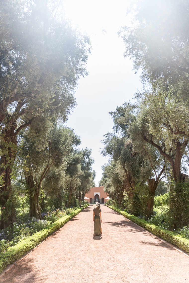 In the gardens on the grounds of Hotel Mamounia in Marrkech Morocco