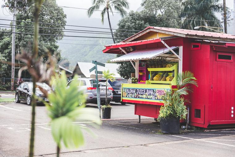 Aloha Juice Bar in Hanalei Bay Kauai Hawaii
