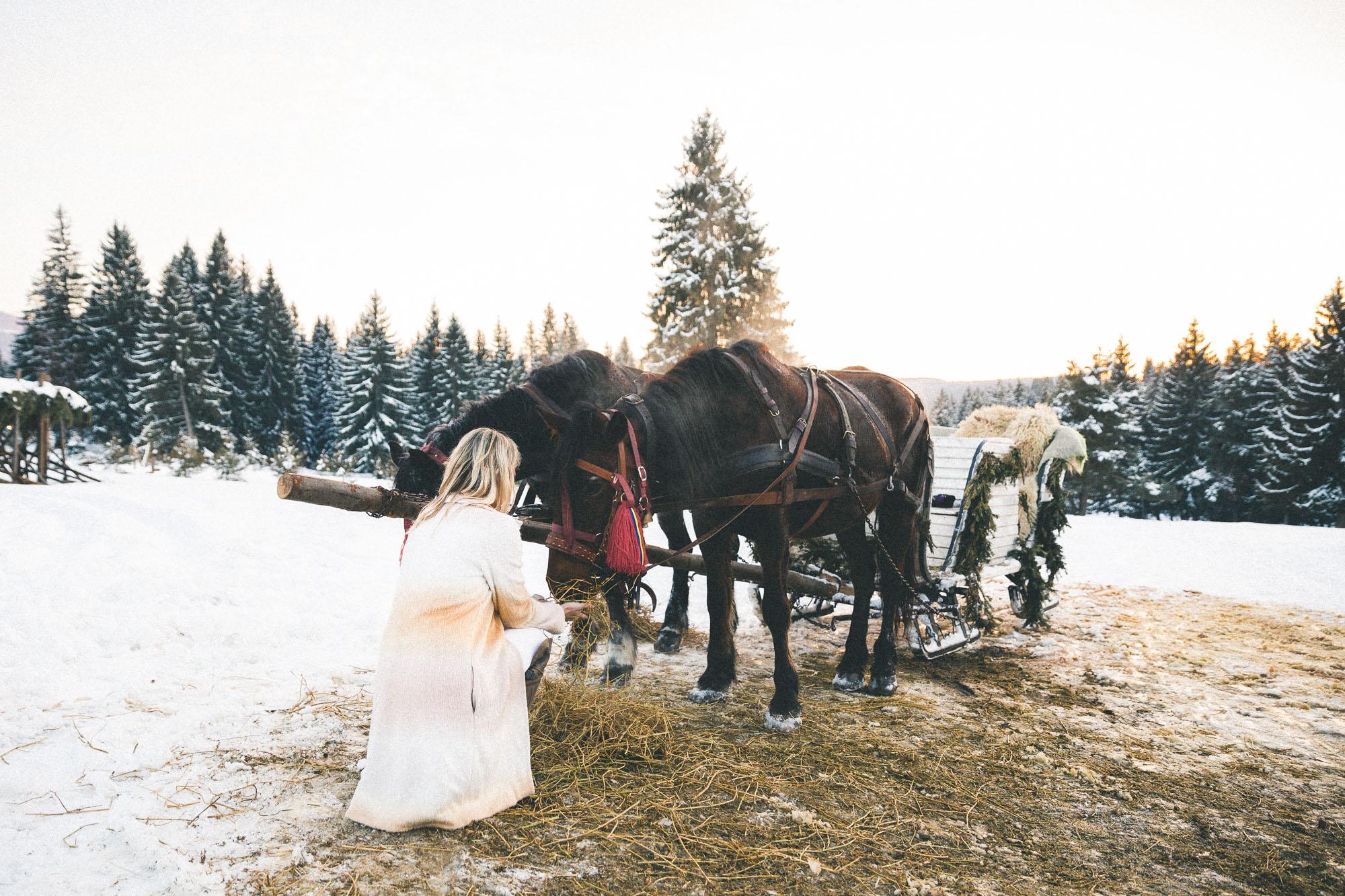 Romania Sleigh Ride via Find Us Lost