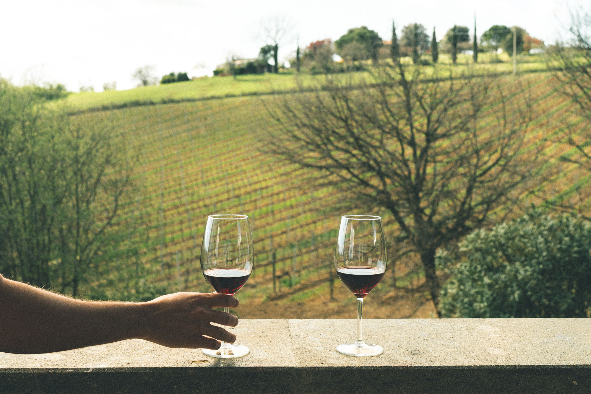 Wine tasting in southern Tuscany, Italy