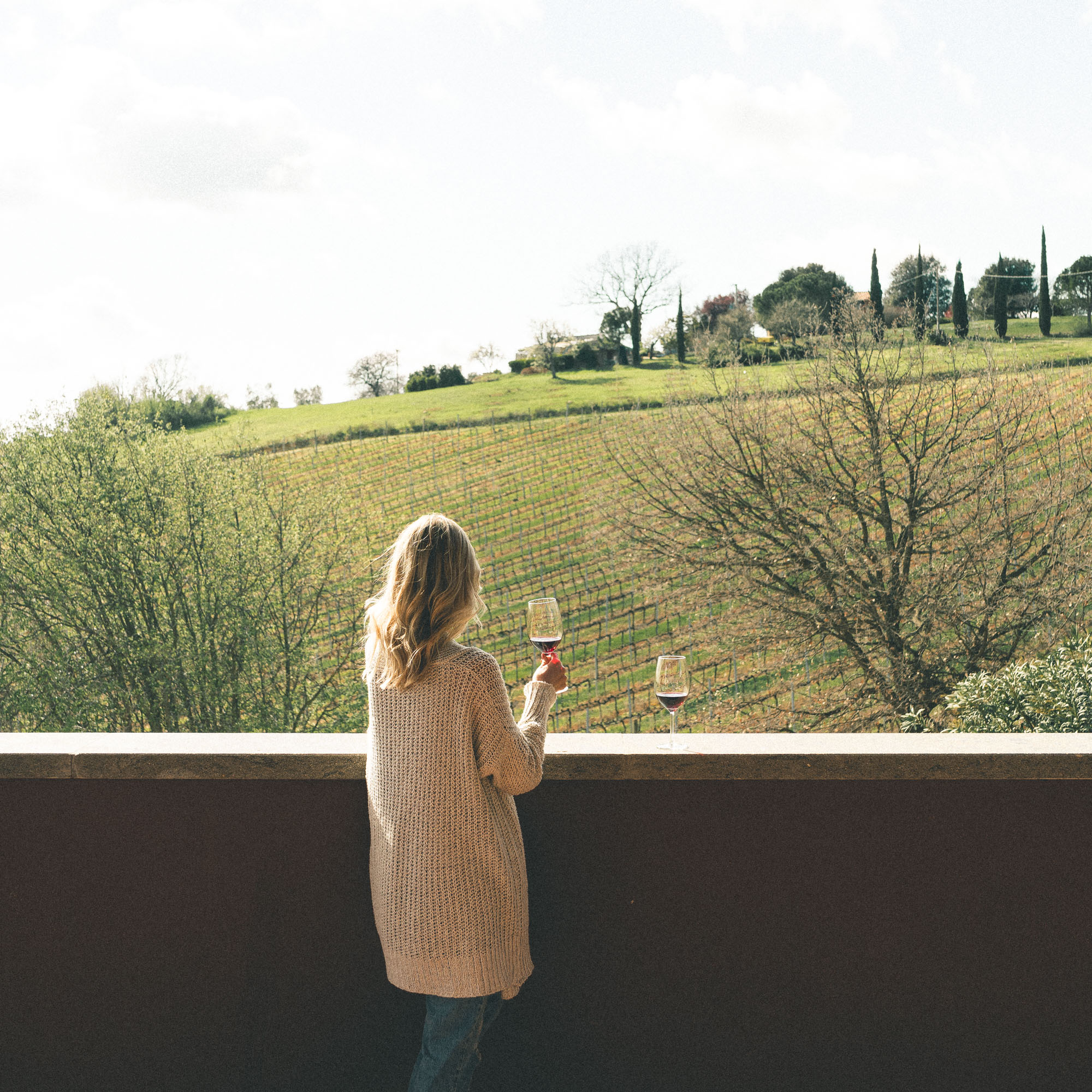 Wine tasting in southern Tuscany, Italy with views over vineyard