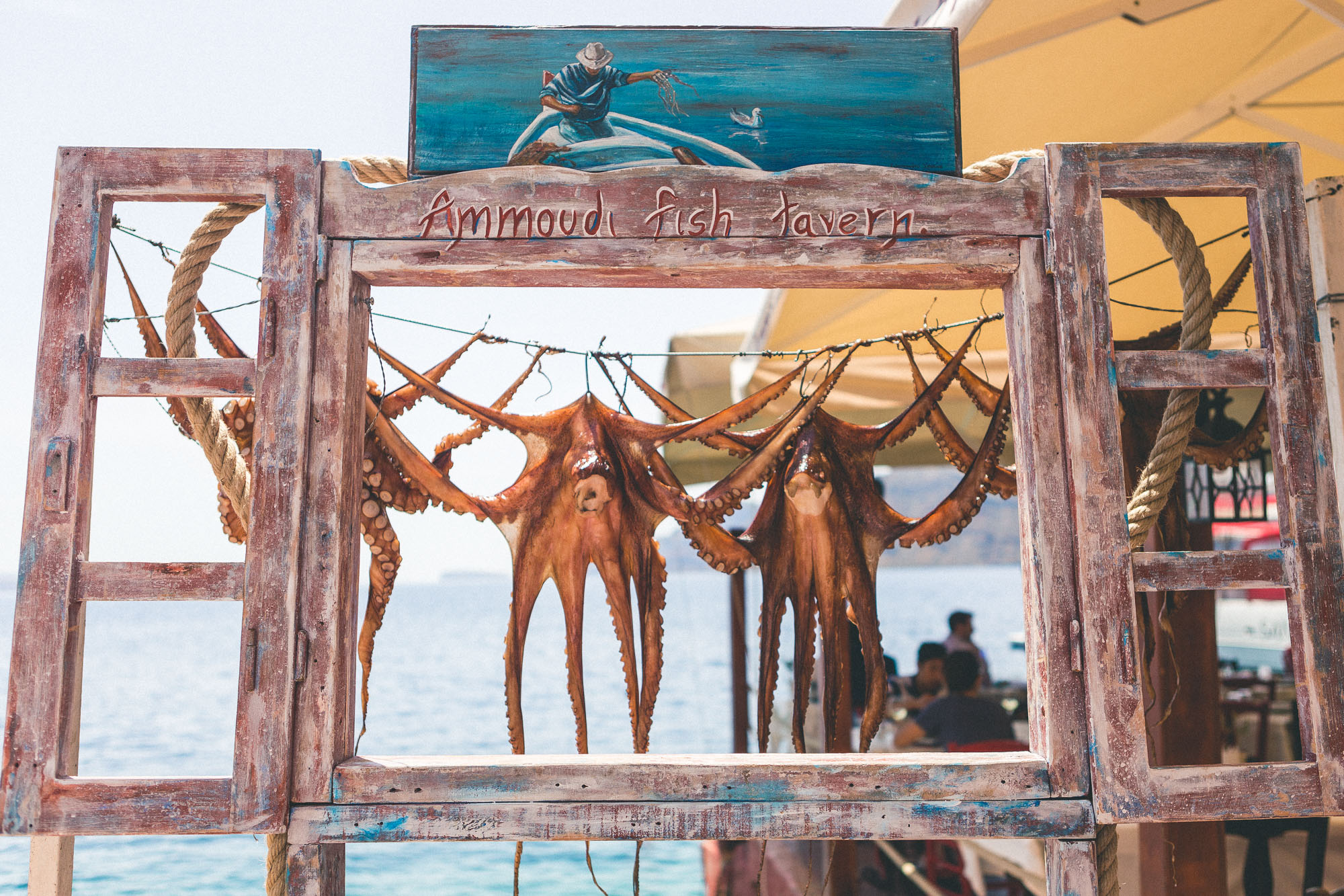 Fresh octopus in oia, santorini, greece