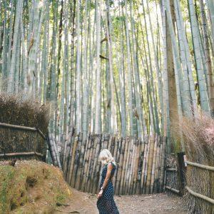 Arashiyama Bamboo Grove in Kyoto, Japan | 24 Hour Guide to Kyoto, Japan | 1 Day Guide Kyoto | Kyoto City Guide | Kyoto Travel Itinerary