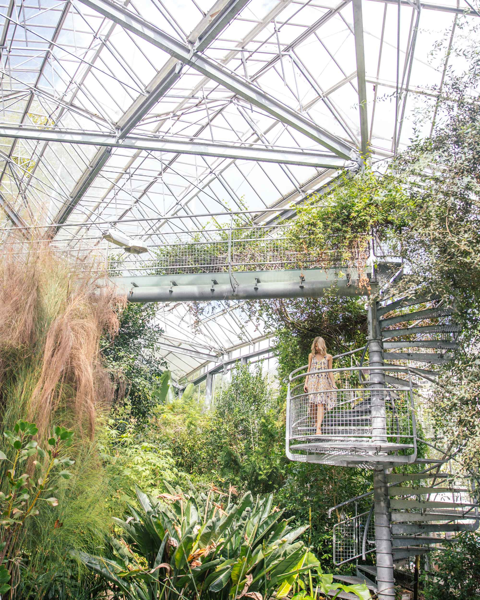 Hortus Botanicus gardens in Amsterdam city center, Holland, The Netherlands