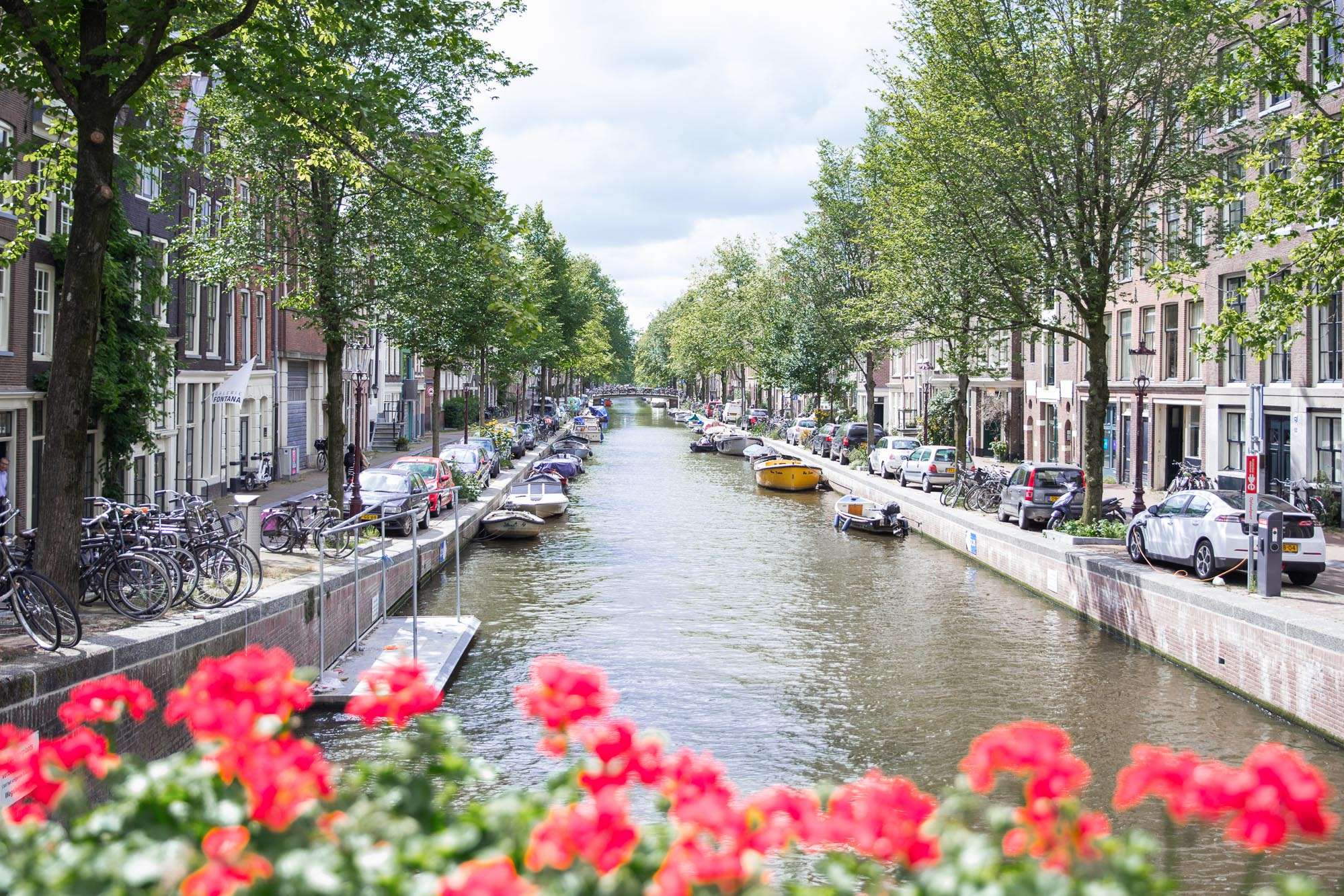 Canals with flowers in the springtime in Amsterdam, Netherlands