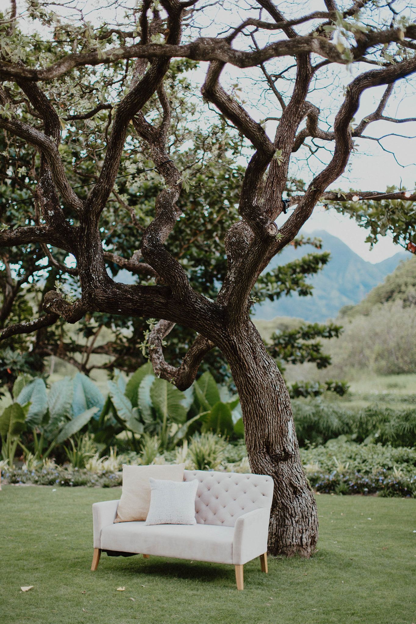 Blush couches on destination wedding in kauai