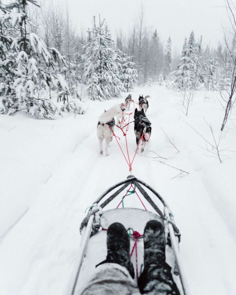 Video: Lapland, Finland