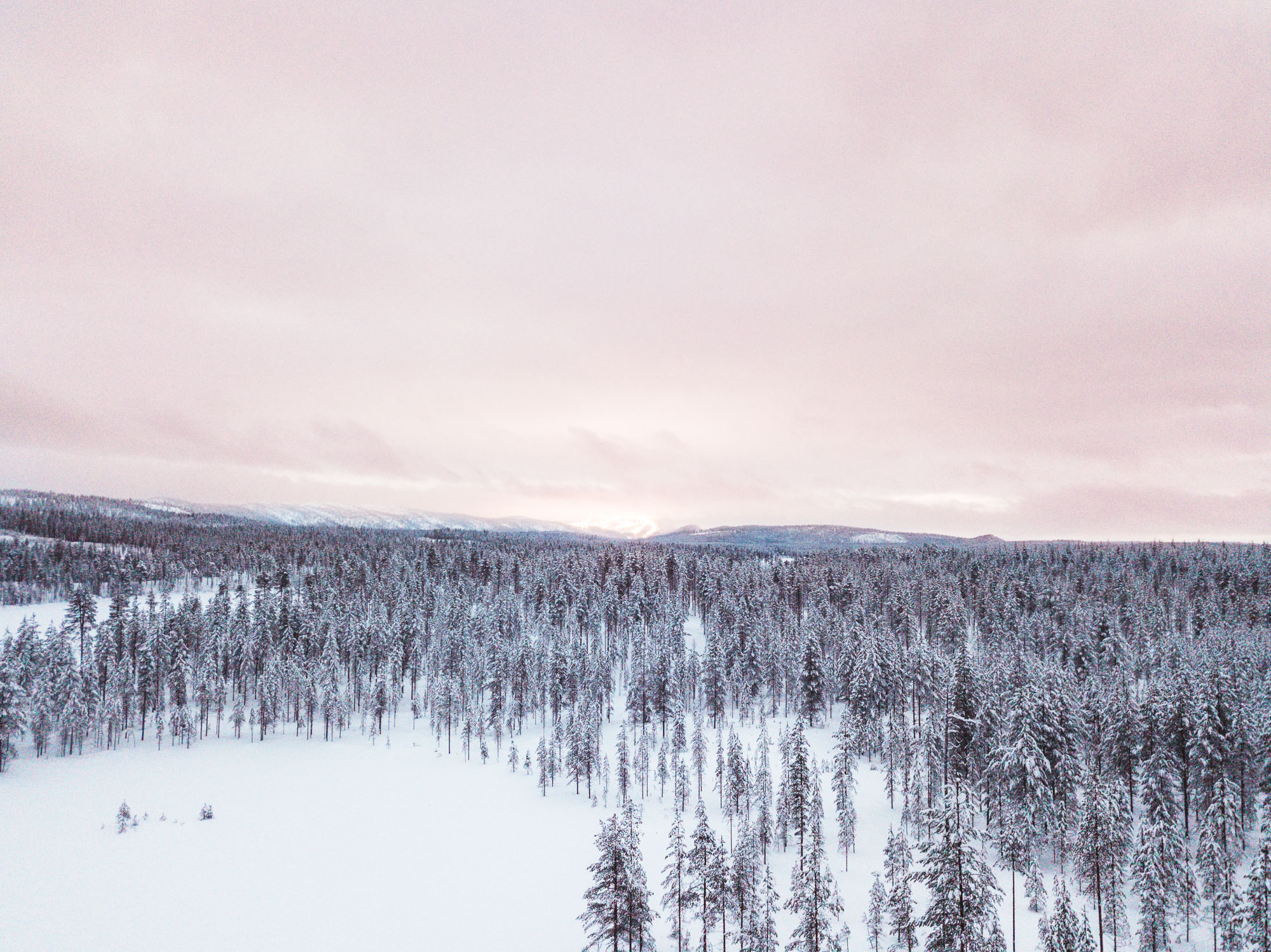 Snow-covered trees and mountains during sunset in Finland