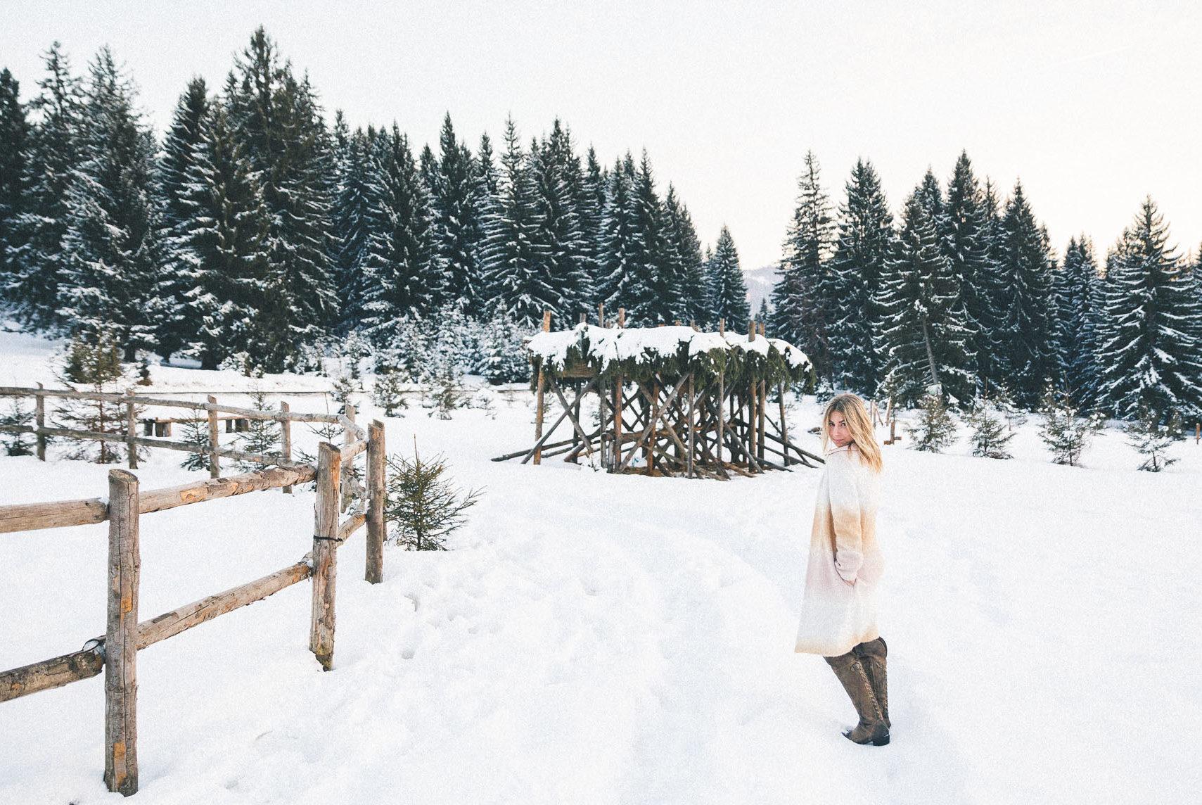 Hut in Poiana Brasov, Transylvania, Romania