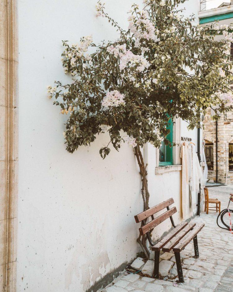 Cyprus Mini Guide