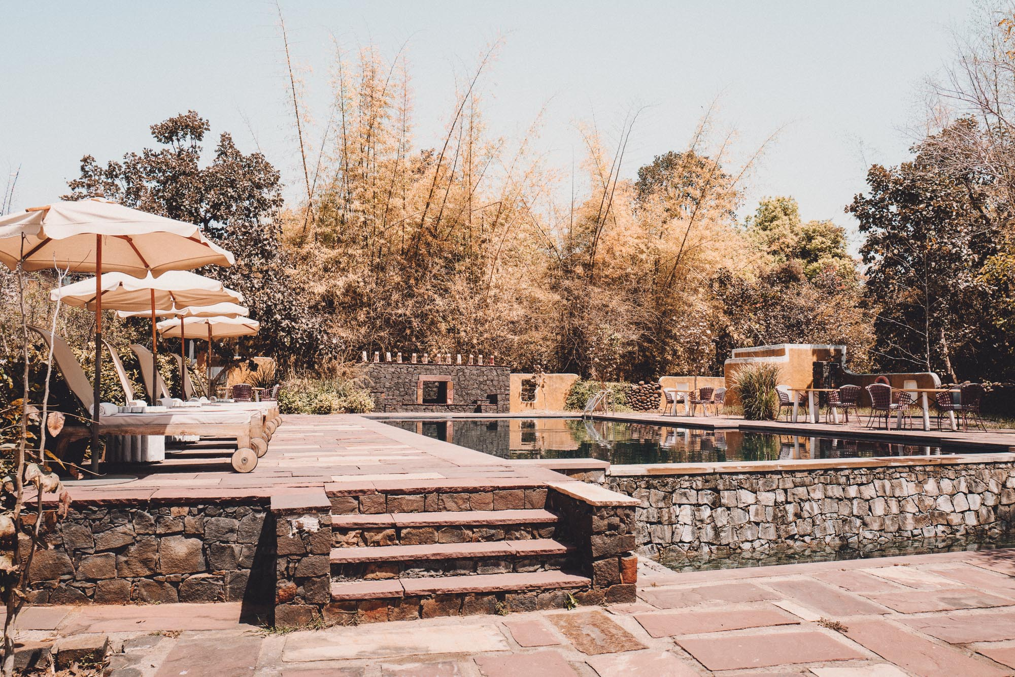 Tiger Safari at Samode Safari Lodge in Ranthambore National Park, India via Find Us Lost