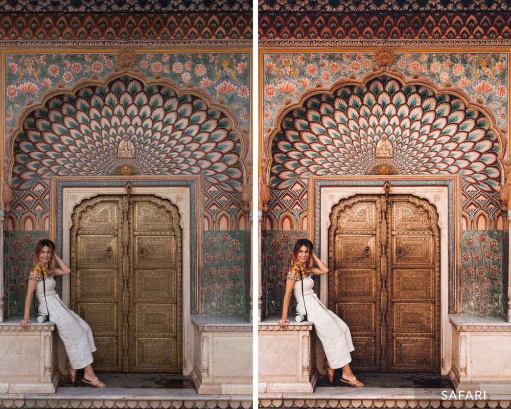 SAFARI - Find Us Lost India Lightroom Desktop Preset Collection