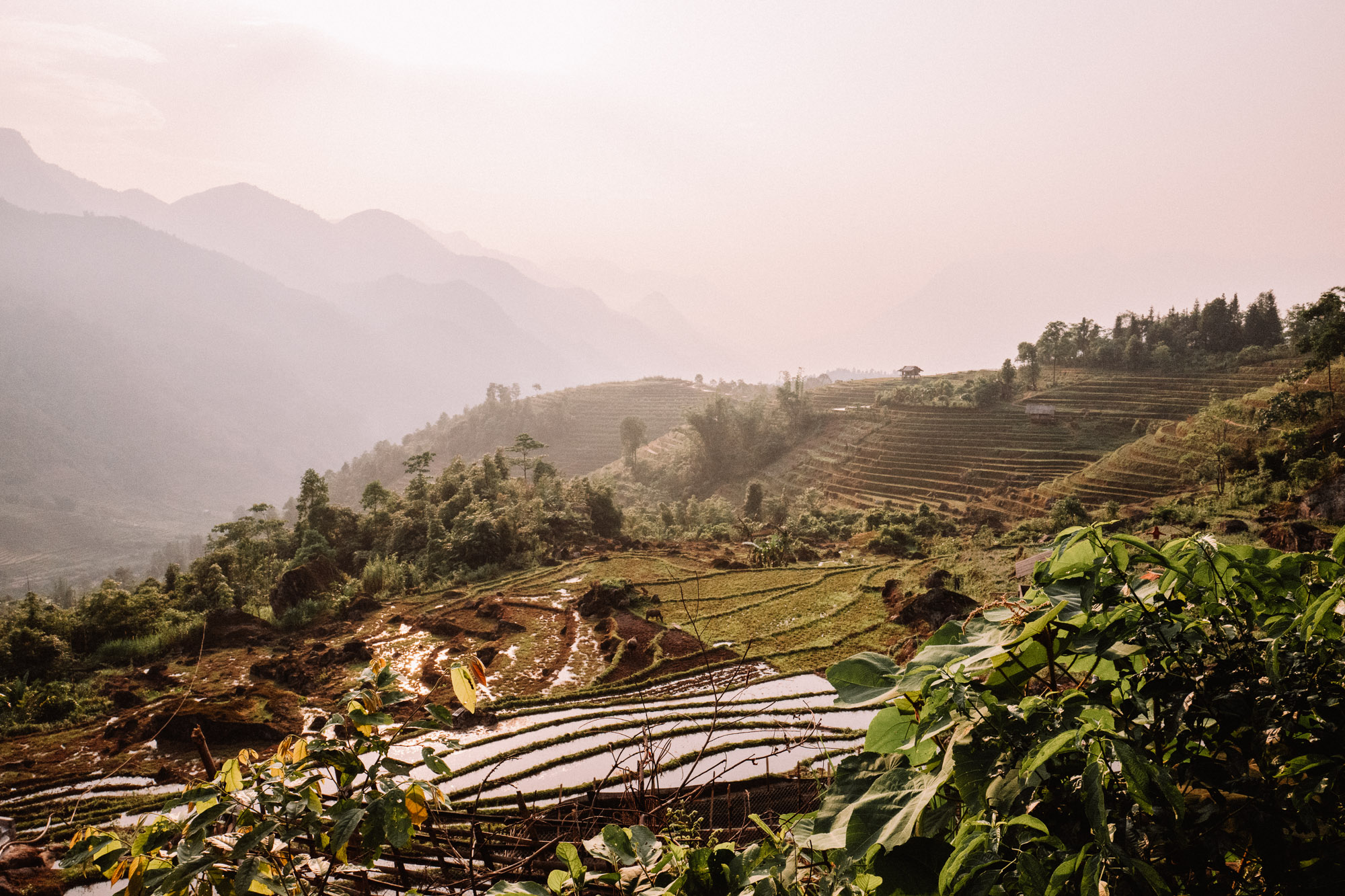 Sunset over the rice fields in Sapa Vietnam