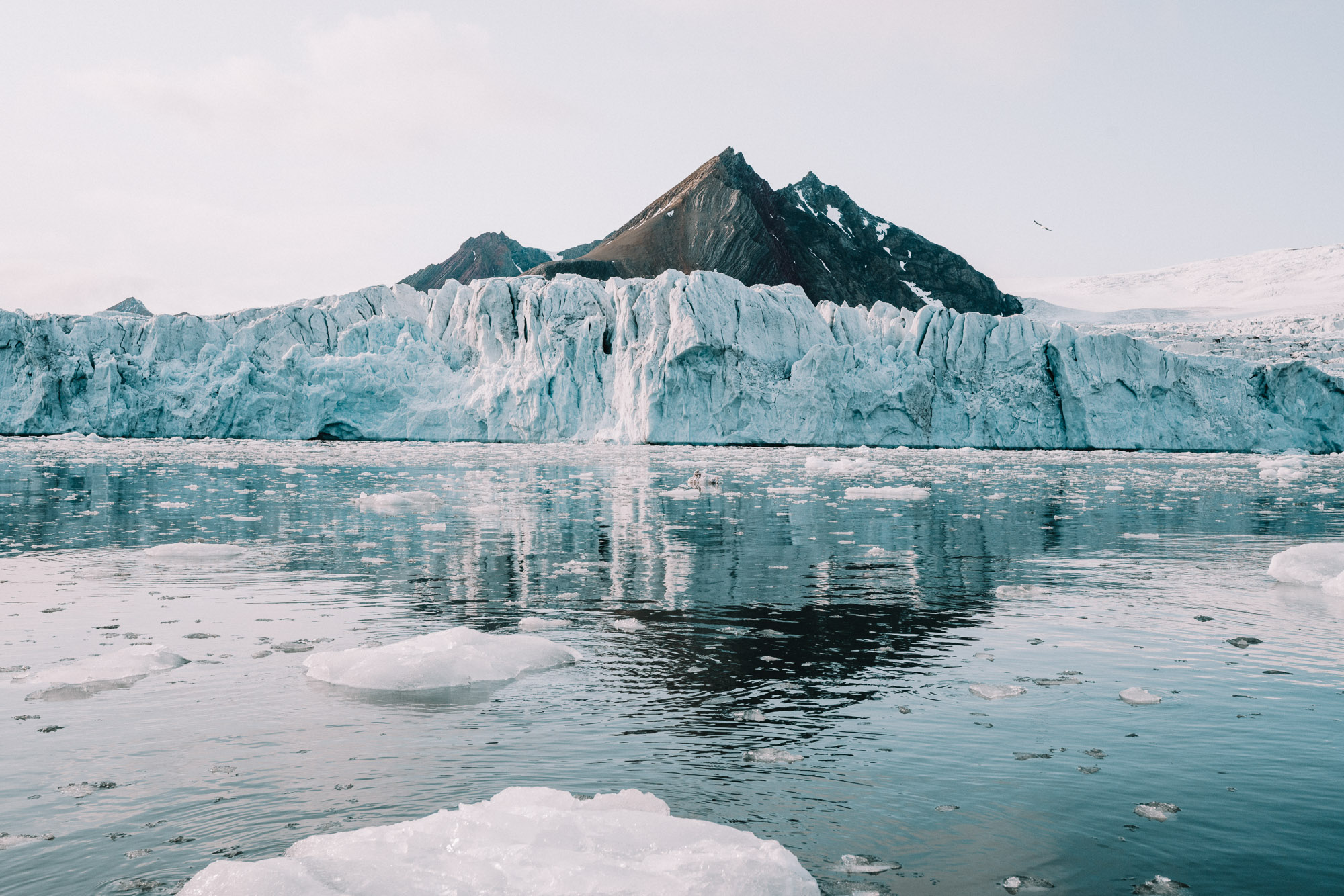 Brepollen glacier bay in Svalbard, Spitsbergen, Norway