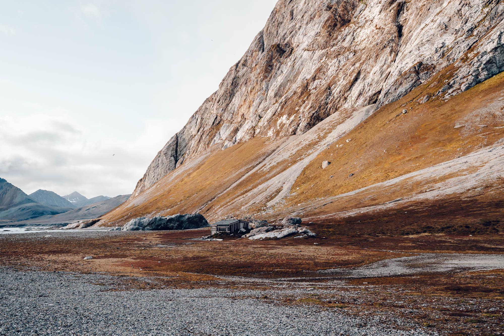 Bird cliffs in Svalbard, Spitsbergen, Norway