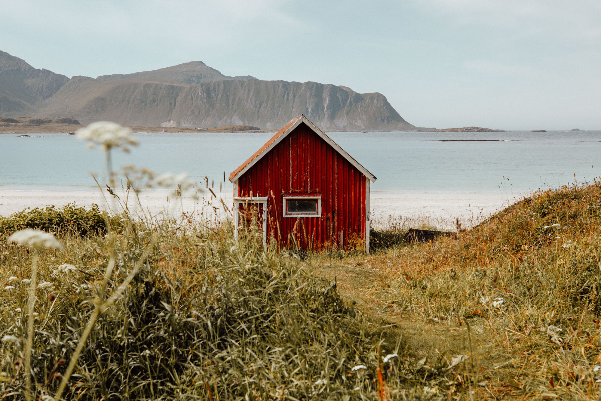 Red house on the beach in Lofoten, Norway