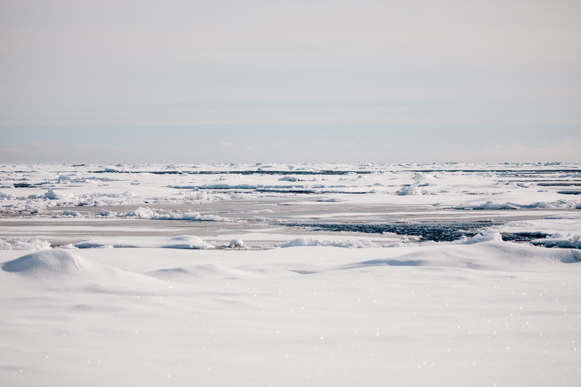 On an ice float in the arctic ocean of Svalbard via Find Us Lost