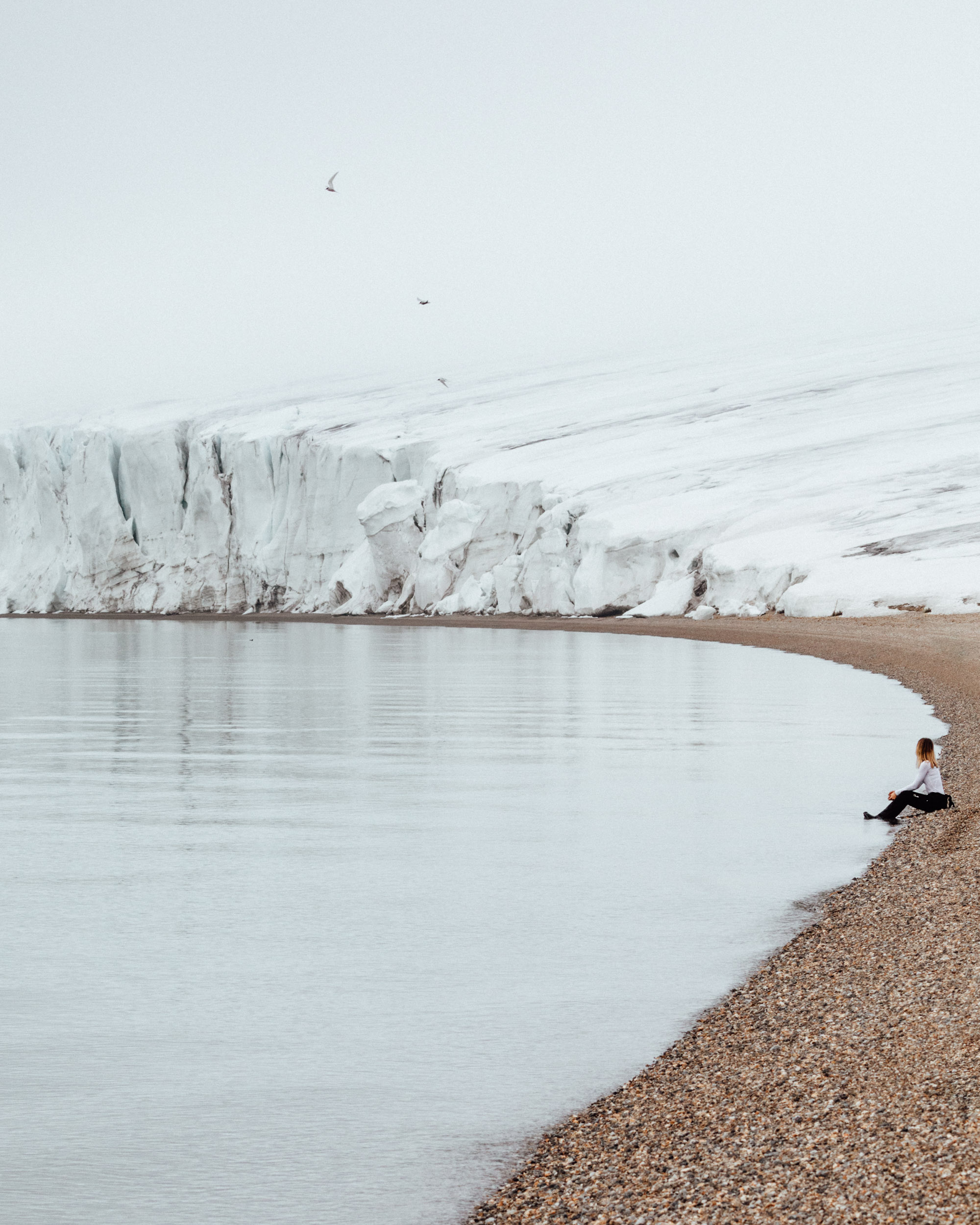 Glacier on the beach in Torrellneset Svalbard Spitsbergen via @finduslost
