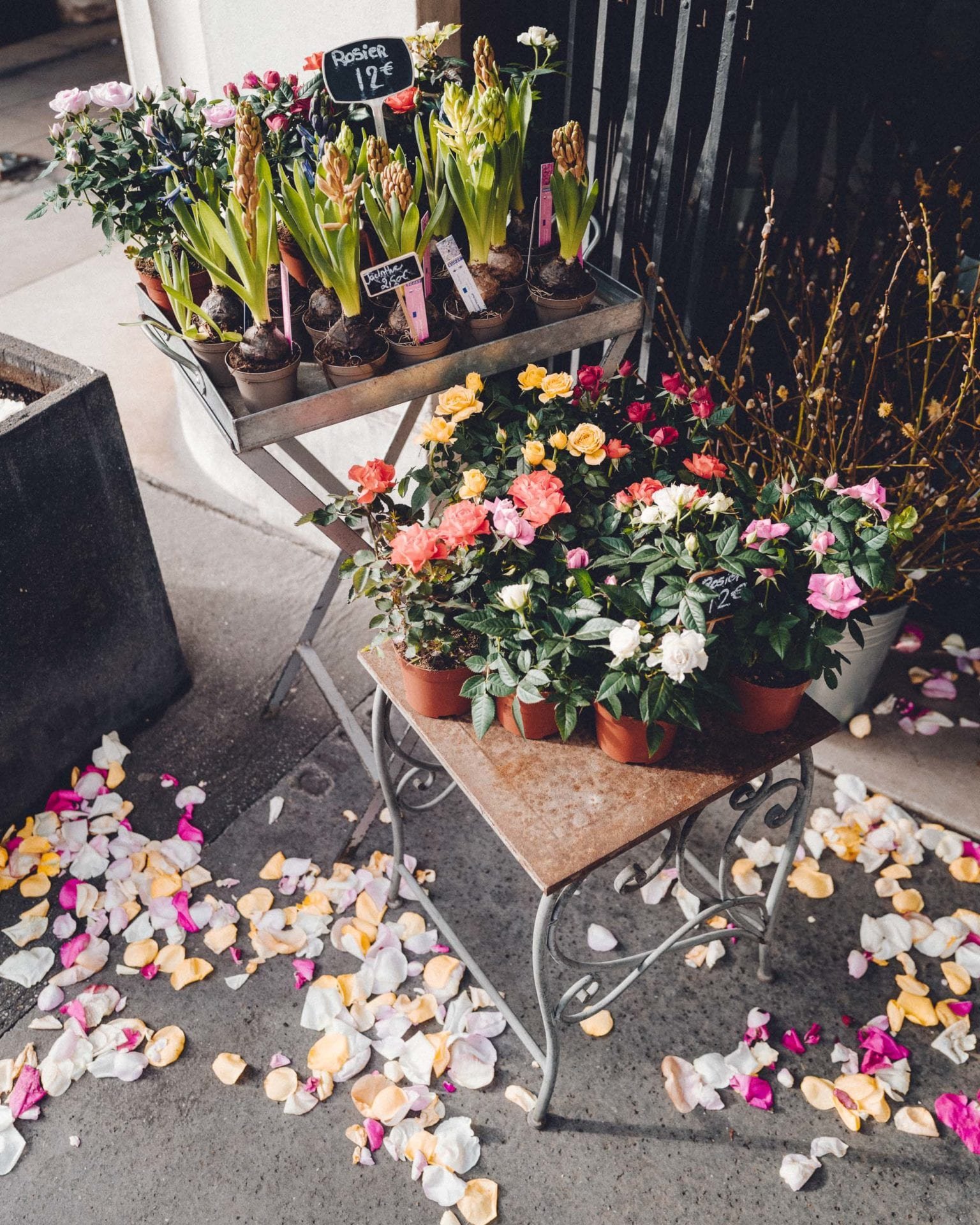 Flowers for Valentine's Weekend in Paris France