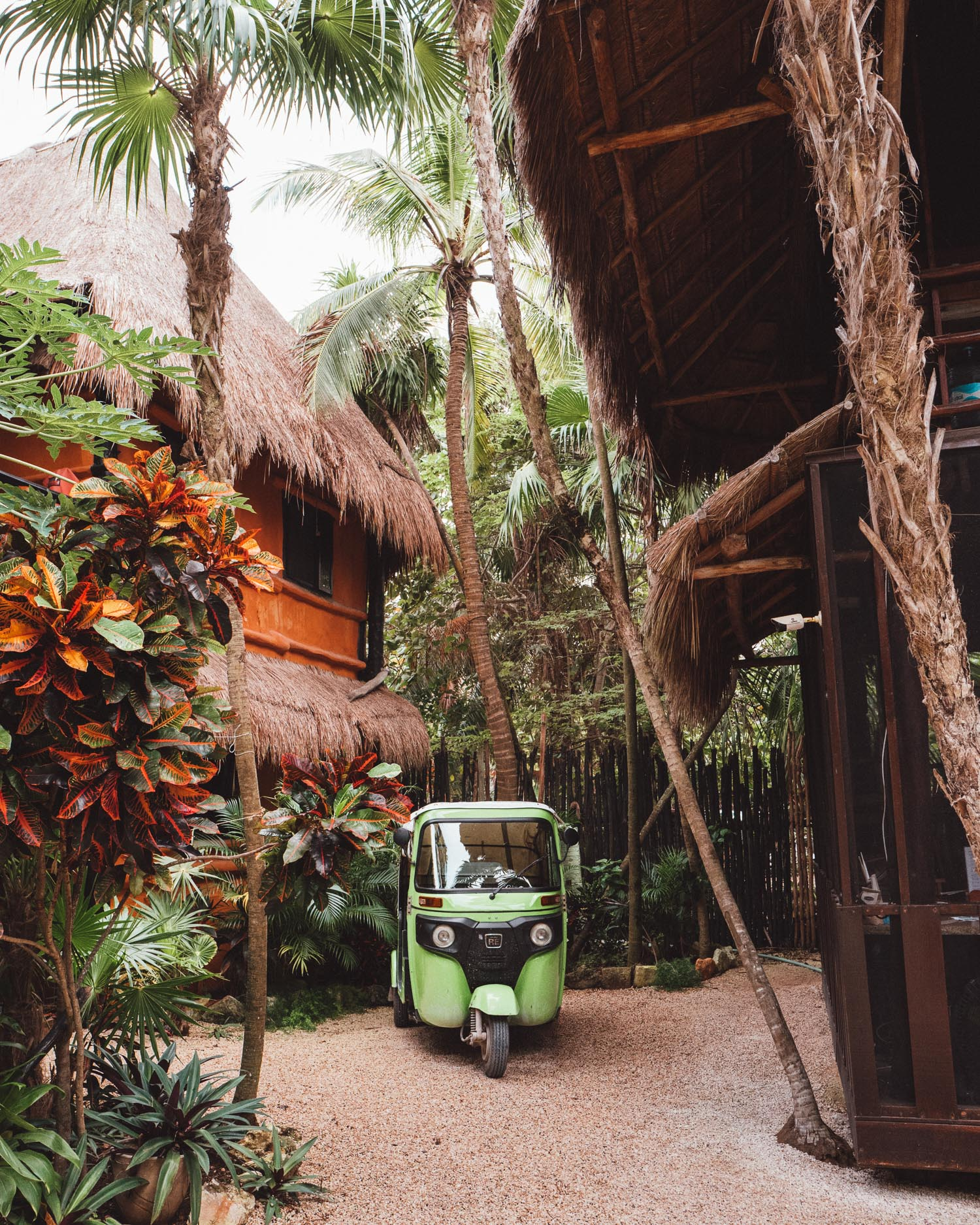 Scooter and palm trees in Tulum, Mexico